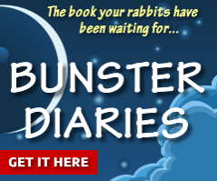 image of The latest news about the Bunster Diaries book