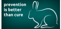 image of Grooming rabbits