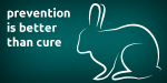 image of Neutering male rabbits